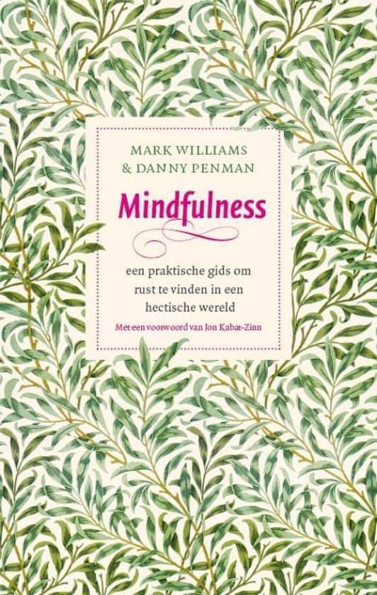 mindfulness een praktische gids om rust te vinden in een hectische wereld