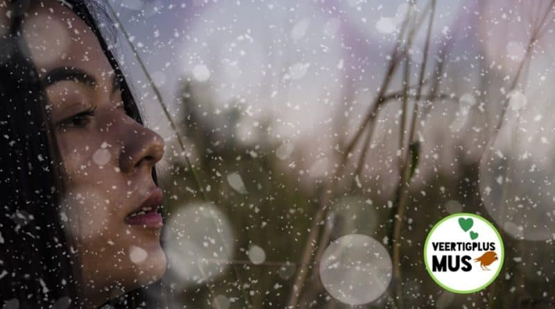 wat is een winterdepressie of winterdip en oorzaken