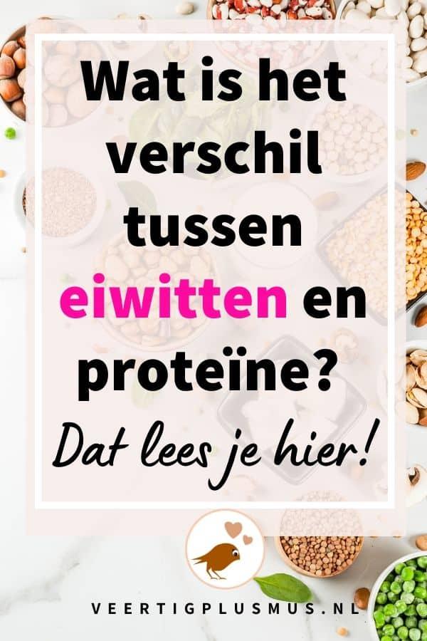 Wat is het verschil tussen eiwitten en proteïne