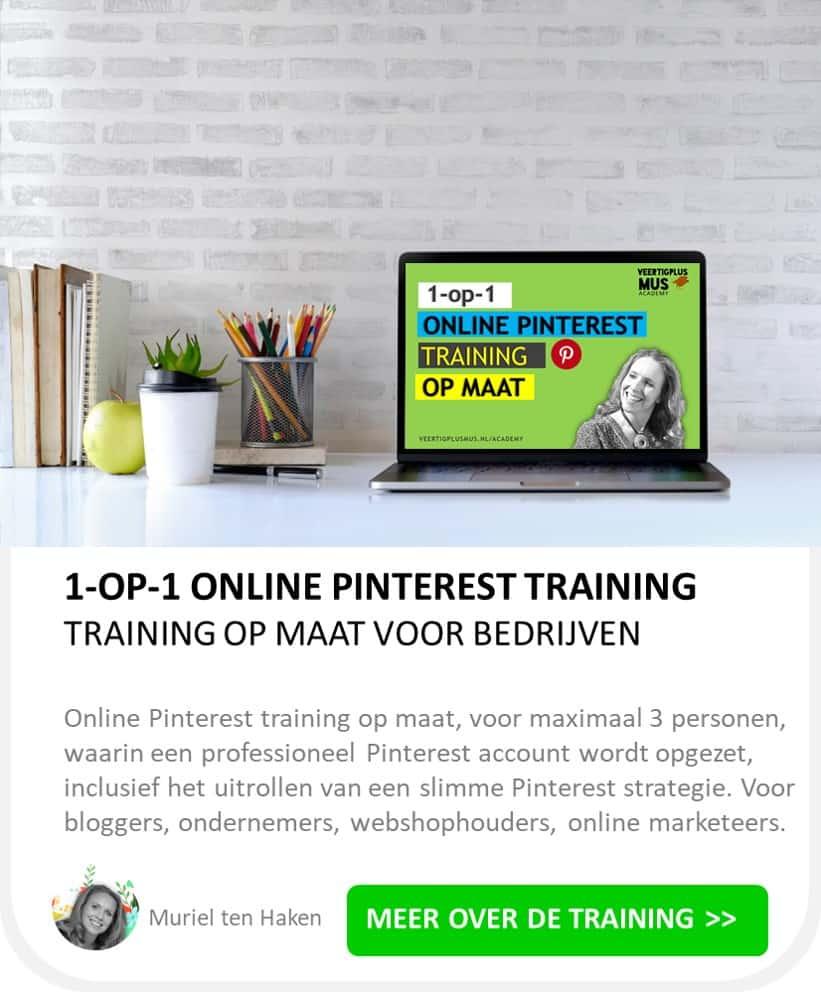 1 op 1 online pinterest training op maat