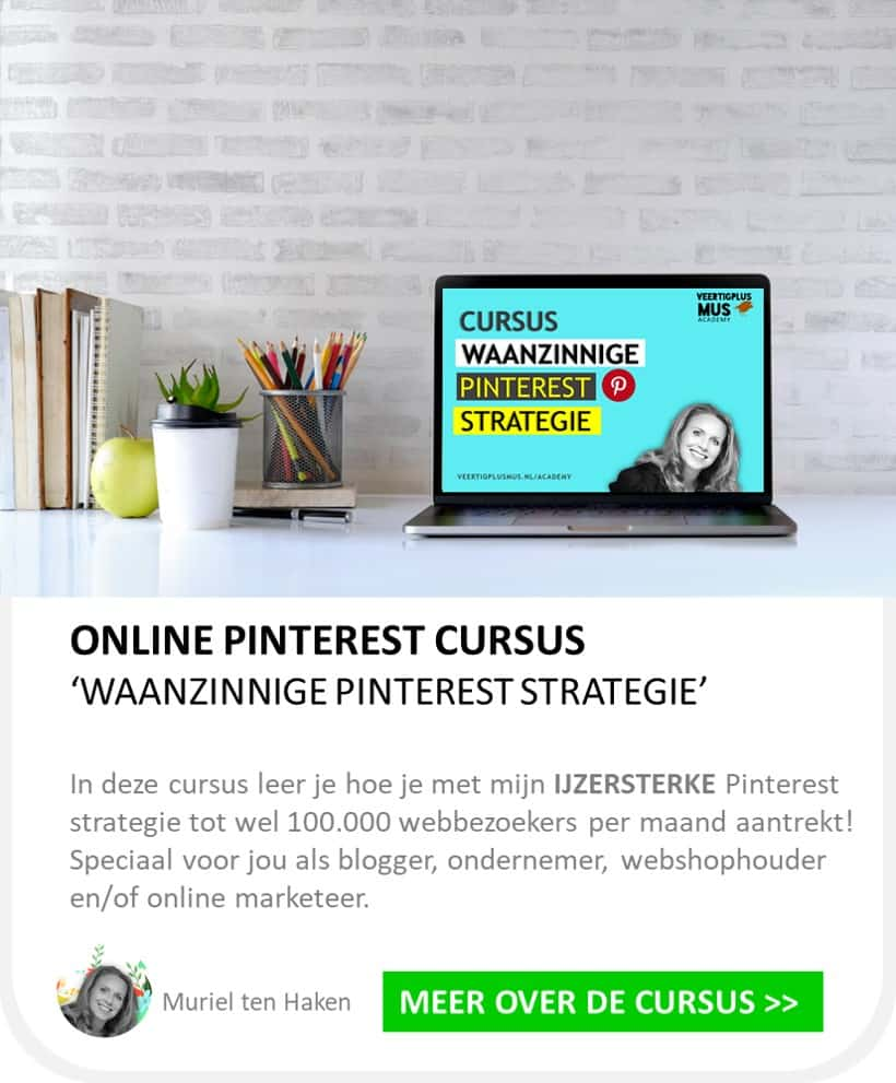 online pinterest cursus