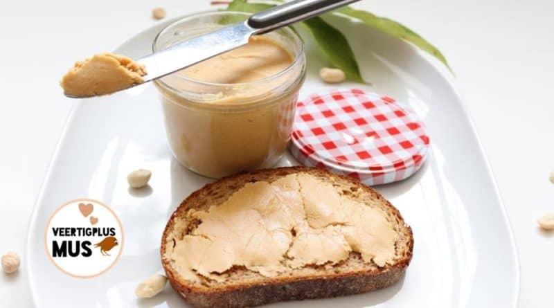 Zelfgemaakte grootmoeders pindakaas, vegan, suikervrij, lactosevrij
