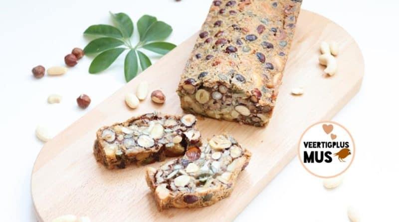 Recept gezond Hollands oerbrood suikervrij en lactosevrij