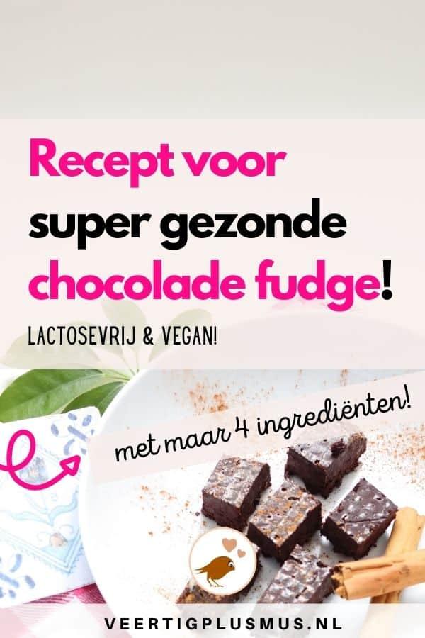 recept super gezonde chocolade fudge lactosevrij vegan