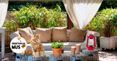 4 tips om in de winter of met slecht weer comfortabel in je tuin te zitten