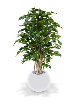 Ficus exotica deluxe maxifleur kunstplanten