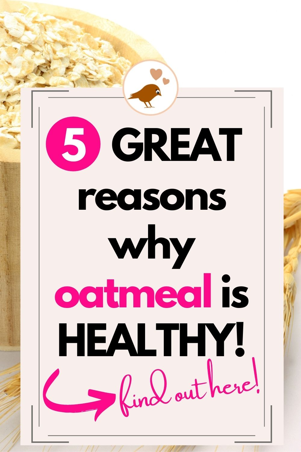 5 great reasons why oatmeal is healthy