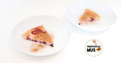 koolhydraatarme taart met rood fruit recept