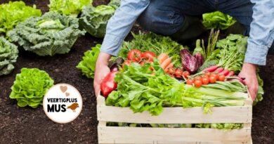 5 redenen om te kiezen voor biologische producten!